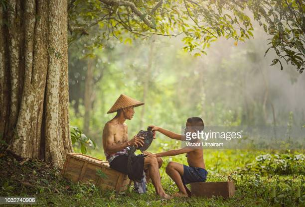 asian farmer with son are training his fighting cock - myanmar stock pictures, royalty-free photos & images
