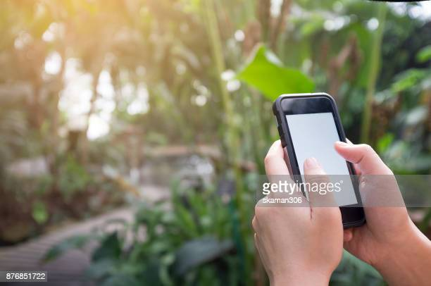Asian female hand holding smart-phone mobile in the rain forest garden