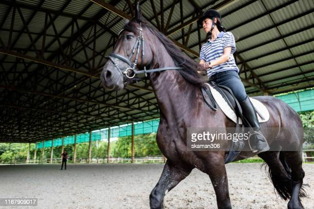 asian female jockey riding horse  and fast  running  in indoor training ground sport - jockey silks stock pictures, royalty-free photos & images