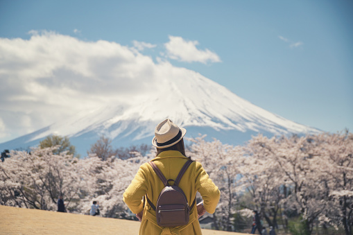Asian female tourist standing with cherry blossom tree and Mt. Fuji - gettyimageskorea