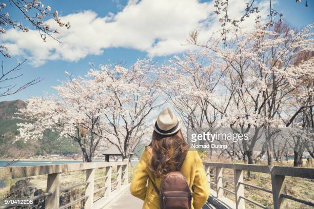 Asian female tourist standing with cherry blossom tree.