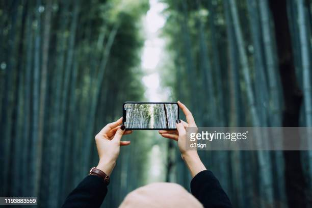 asian female traveller photographing the spectacular nature scenics of arashiyama bamboo forest with smartphone while travelling in kyoto, japan - 自然 ストックフォトと画像