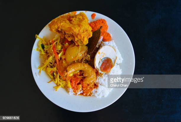 Asian Food - Indian Curry Rice
