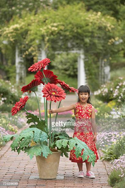 asian girl in garden with giant potted plant - long stem flowers stock pictures, royalty-free photos & images