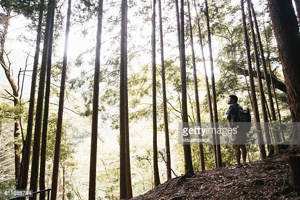 Asian Hiker Enjoying a Great View in Woods
