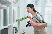 asian housekeeper in apron dusting the bookshelf
