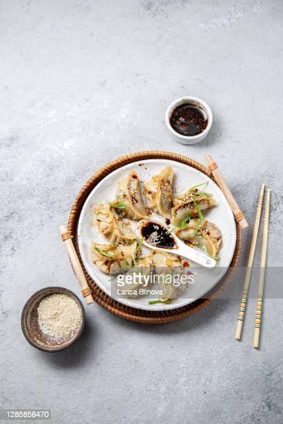 asian japanese and korean gyoza dumplings on white plate, gray background, top view - prato de soja - fotografias e filmes do acervo
