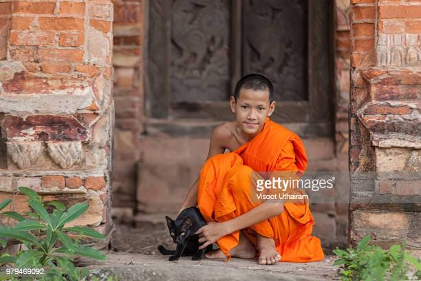 asian little monk playing with a cat at temple - ラオス ストックフォトと画像