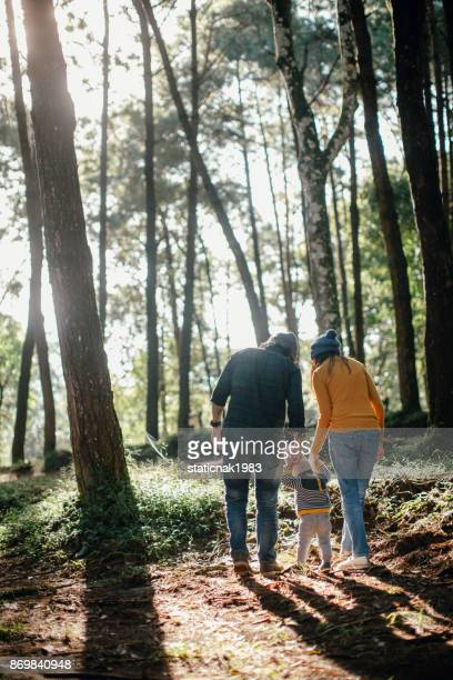 asian parents and baby walking past in a forest - woodland stock pictures, royalty-free photos & images