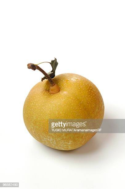 Asian pear, white background