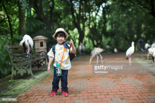 asian toddler boy in field trip to bird park. - jurong bird park stock pictures, royalty-free photos & images