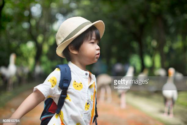 asian toddler in filed trip to bird park. - jurong bird park stock pictures, royalty-free photos & images