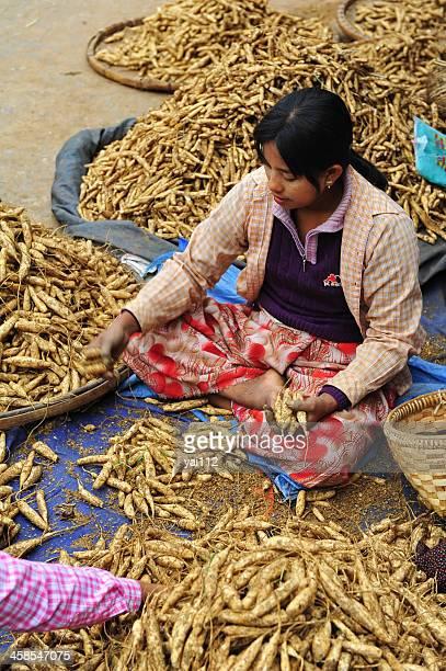 asian trader - irish potato famine stock pictures, royalty-free photos & images
