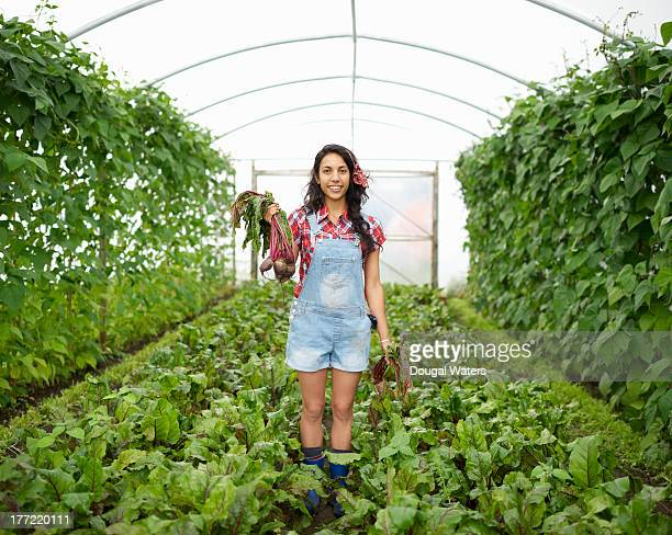 Asian woman in poly tunnel with fresh beetroot.