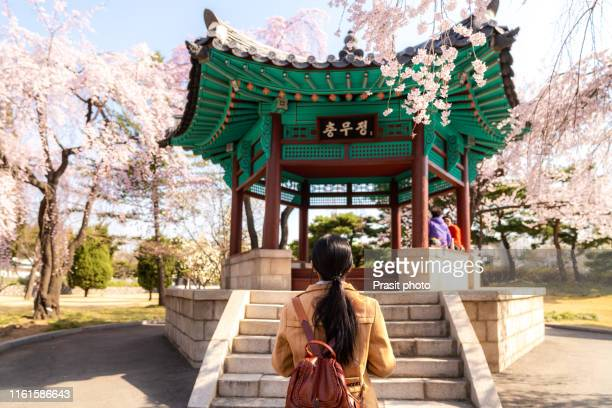asian woman sightseeing korean pavilion in the park with the cherry blossoms are blooming in seoul, south korea. - south korea stock pictures, royalty-free photos & images