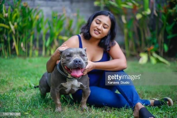 aziatische vrouw die haar beste vriend zorgt - american bulldog stockfoto's en -beelden