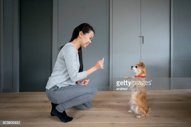 Asian woman training her dog at home