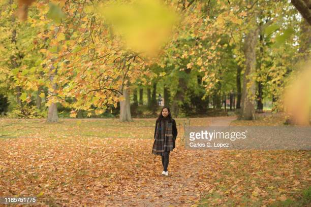asian woman walking in a park covered in yellow leaves and surrounded by autumn color trees in cambridge, england, united kingdom - outdoors stock pictures, royalty-free photos & images