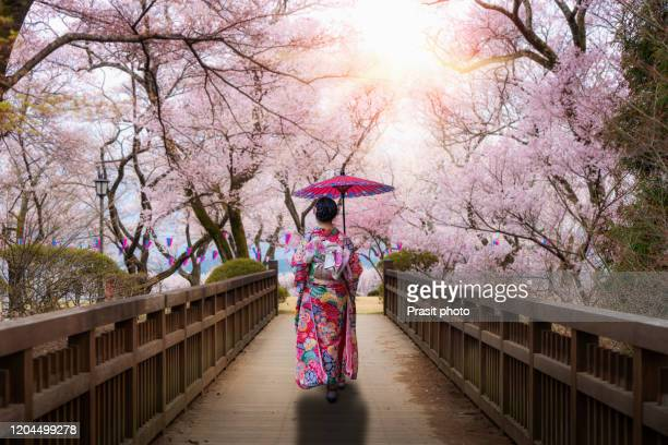 asian women wearing traditional japanese kimono with red umbralla walking in kasuga park with cherry blossom in background in spring season in nagano, japan. woman walking to sightseeing in japan. - geisha fotografías e imágenes de stock