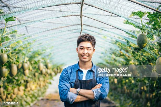 asian young male farm using digital tablet and checking cantaloupe in organic farm - agronomist stock pictures, royalty-free photos & images