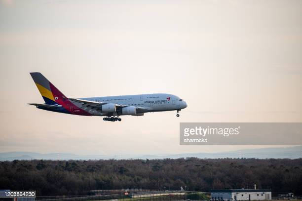 asiana airbus a380 approaching frankfurt airport - frankfurt international airport stock pictures, royalty-free photos & images