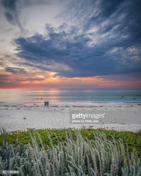 asilomar beach - pebble beach, ca - pebble beach california stock pictures, royalty-free photos & images