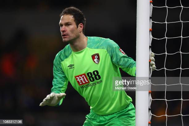 Asmir Begovic of Bournemouth during the Premier League match between Wolverhampton Wanderers and AFC Bournemouth at Molineux on December 15 2018 in...