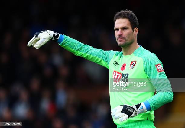 Asmir Begovic of Fulham looks on during the Premier League match between Fulham FC and AFC Bournemouth at Craven Cottage on October 27 2018 in London...