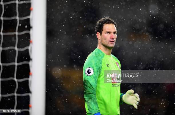 Asmir Begovich of AFC Bournemouth in action during the Premier League match between Wolverhampton Wanderers and AFC Bournemouth at Molineux on...