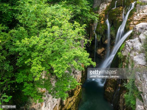 aso river waterfall. ordesa national park and monte perdido. añisclo canyon. pyrenees, spain. - huesca fotografías e imágenes de stock