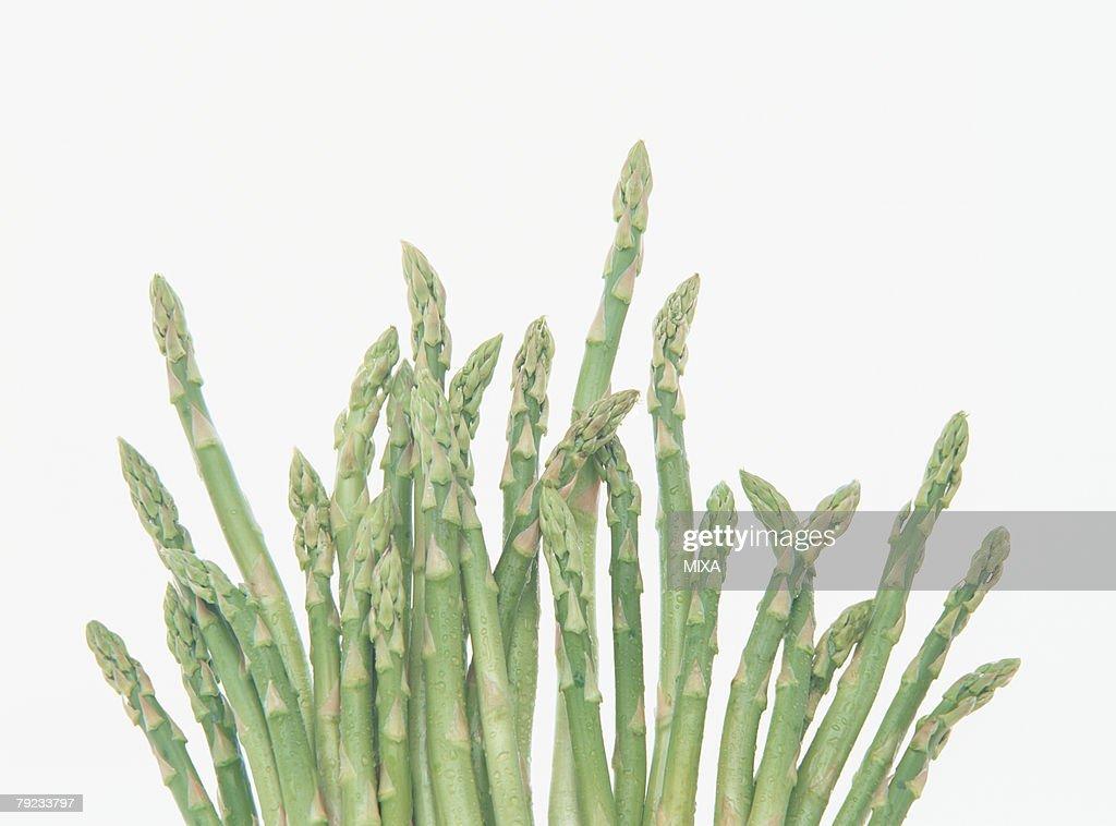 Asparagus, close-up : Stock Photo