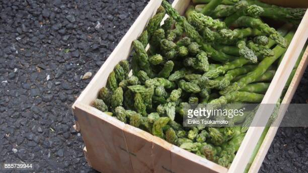 Asparagus in a wooden crate - Tsukiji Market
