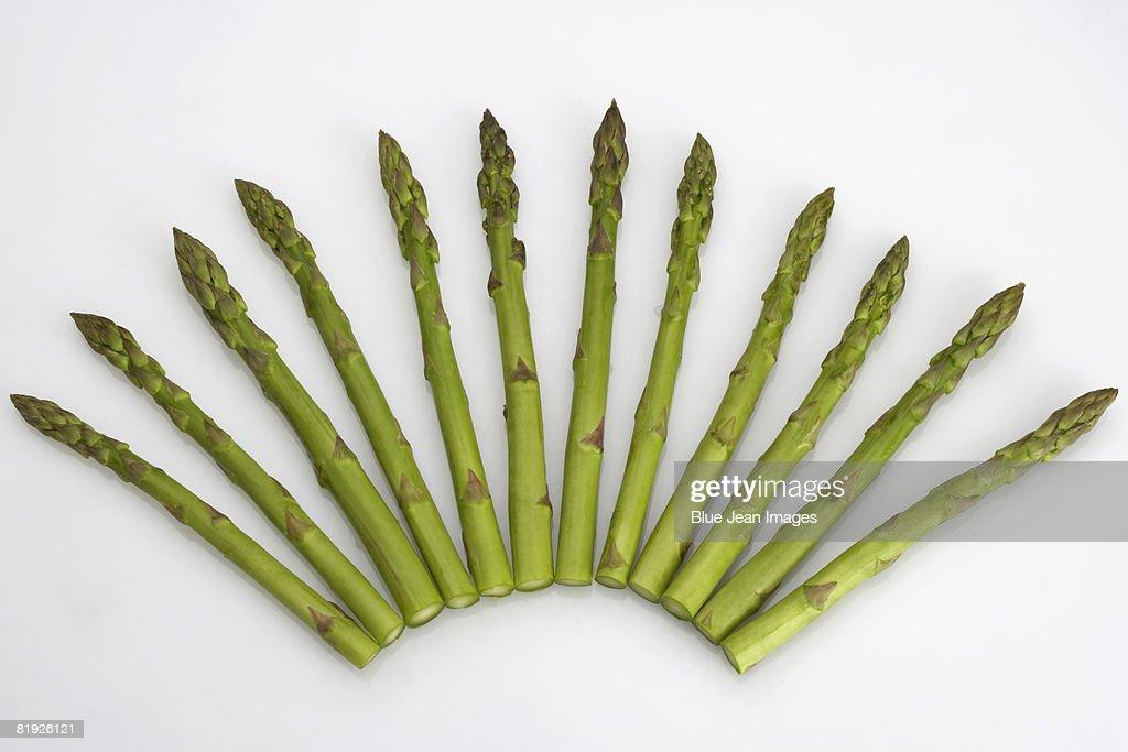 Asparagus in fan shape : Stock Photo