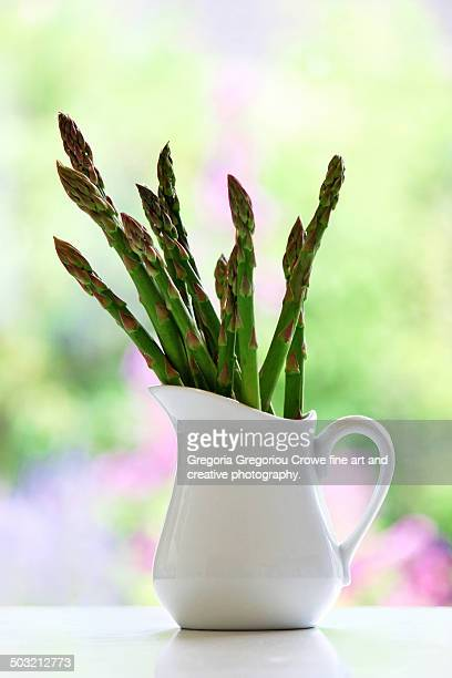 asparagus tips - gregoria gregoriou crowe fine art and creative photography. stock photos and pictures