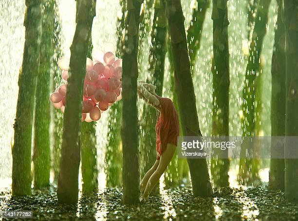 Espárragos bosque Tropical