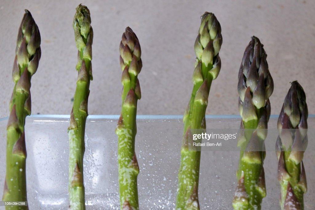 Asparagus Vegetable with Salt : Stock Photo
