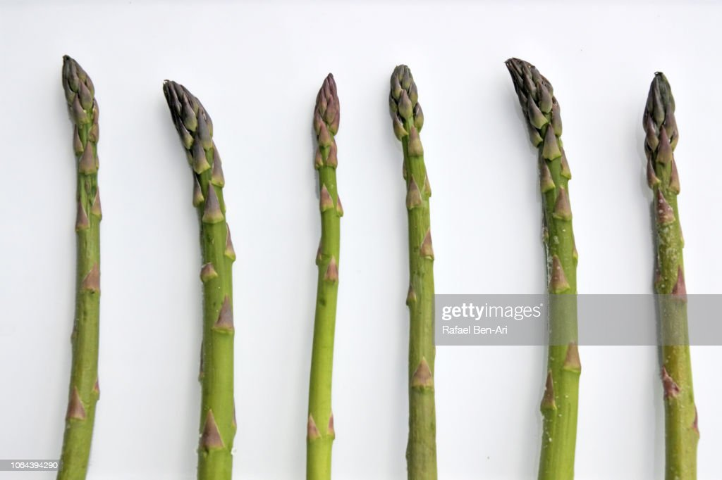 Asparagus Vegetables Served on a White Plate : Stock Photo