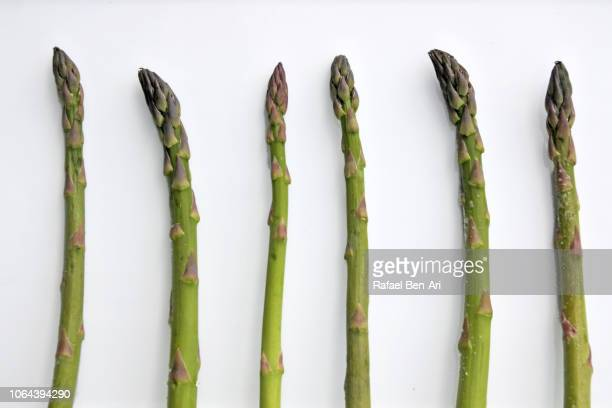 asparagus vegetables served on a white plate - rafael ben ari fotografías e imágenes de stock