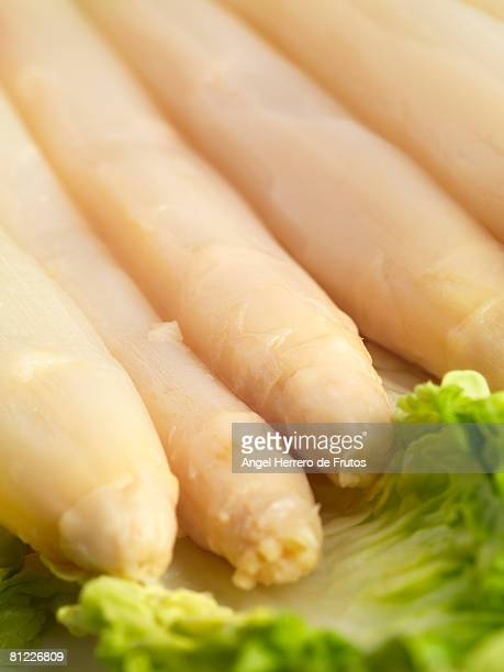 Asparagus with lettuce and tomato. Selective focus on foreground. Shallow deep of field.