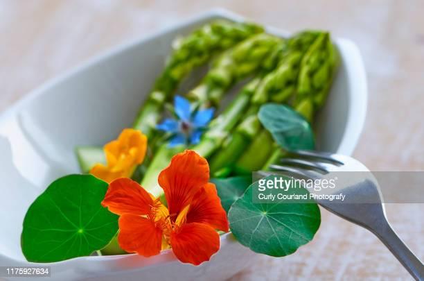 asparagus with nasturtium and borage flowers - nasturtium stock pictures, royalty-free photos & images