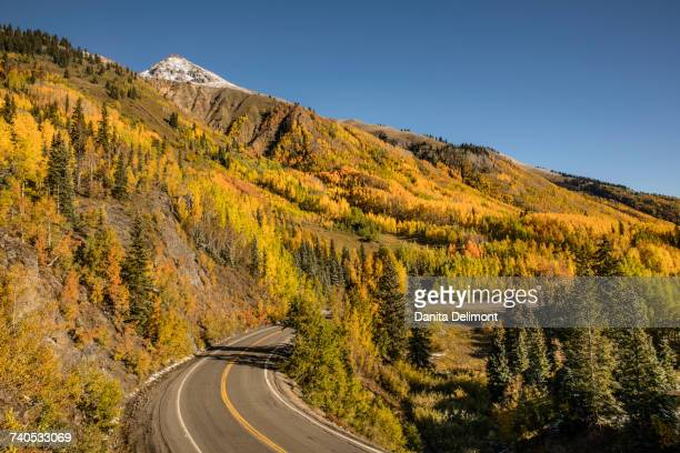 Aspen trees and Million Dollar Highway near Crystal Lake, Ouray, Colorado, USA