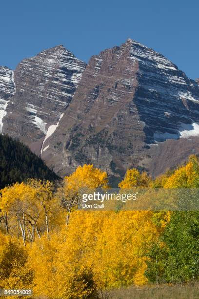 aspen trees in autumn frame maroon bells in colorado - white river national forest stock photos and pictures