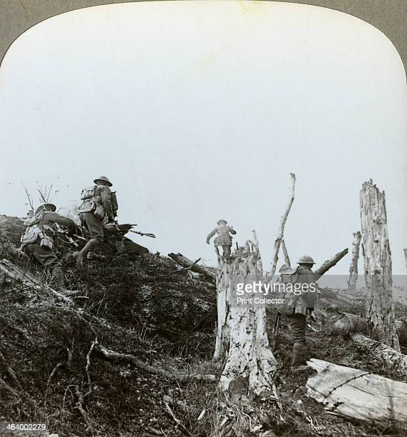 Assault in Trones Wood Somme France World War I 1916 The British 14th and 18th Divisions attacked Trones Wood on 14 July 1916 during the Battle of...