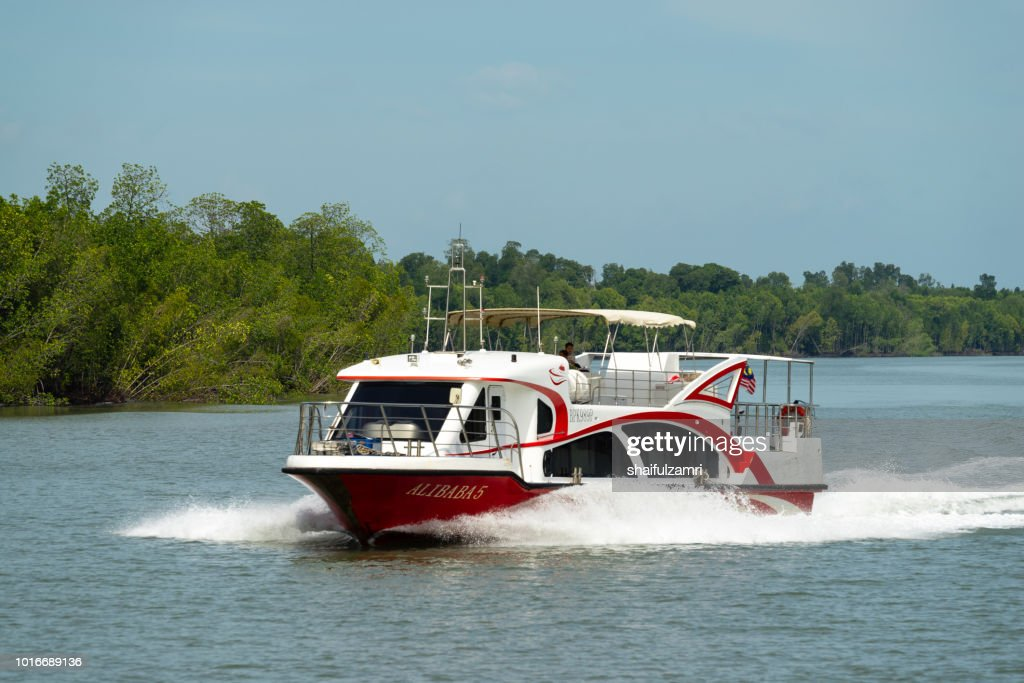 assenger boat from Port Klang route to Pulau Ketam via mangrove trees, a shrub or small tree that grows in coastal saline or brackish water. : Stock Photo