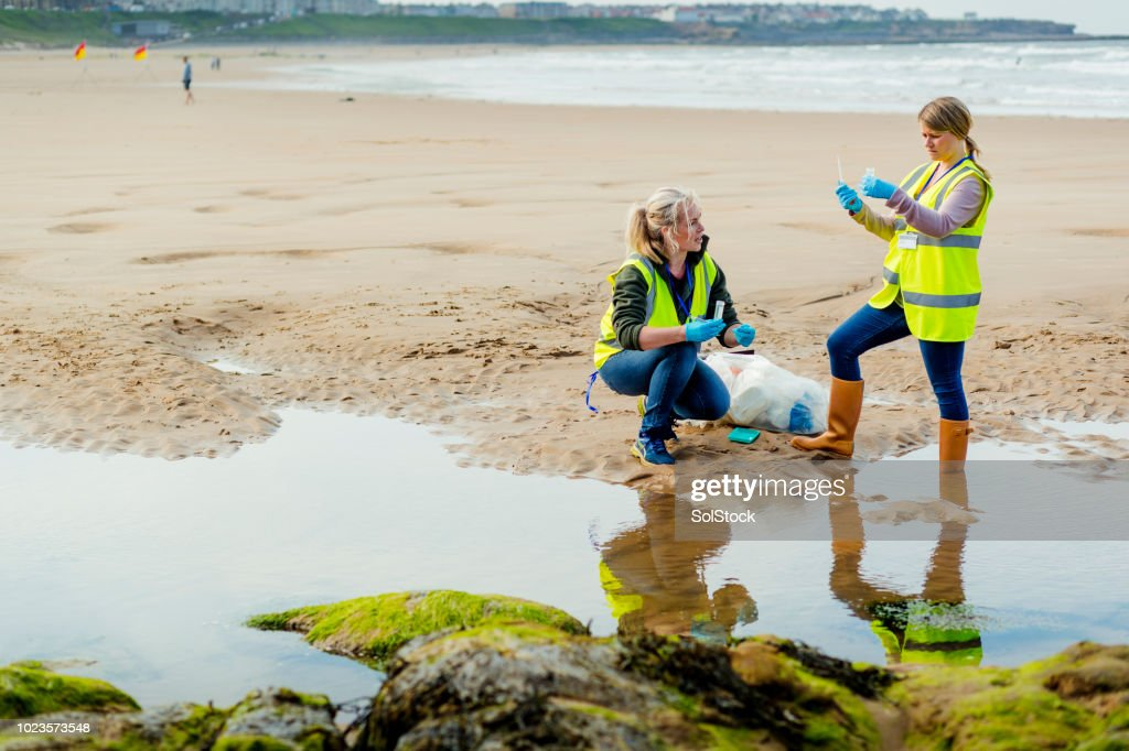Assessing Environmental Damage : Stock Photo