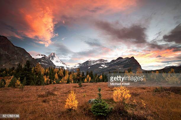 assiniboine sunset - canadian rockies stock pictures, royalty-free photos & images