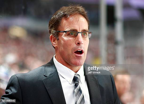 Assistant coach Doug Lidster of the Vancouver Canucks looks on from the bench during their NHL game against theTampa Bay Lightning at Rogers Arena...