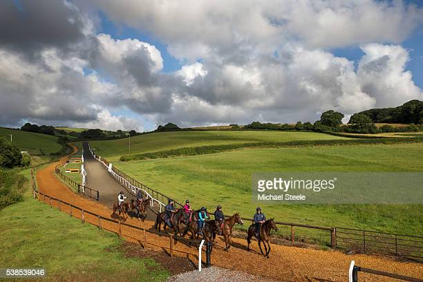 Assistant trainer Johnson White leads first lot in at Sandhill Racing Stables on July 25 2015 in Minehead England Sandhill Racing Stables set in 500...