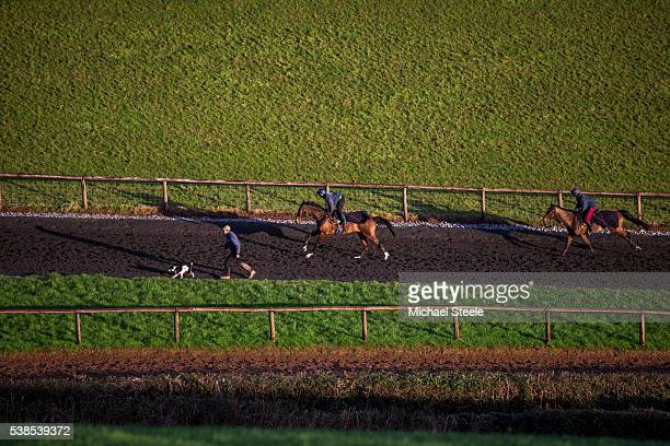 Assistant trainer Johnson White walks alongside Archie as Sean Graham riding Westend Story and James Best riding Barbrook Star head up the polytrack...