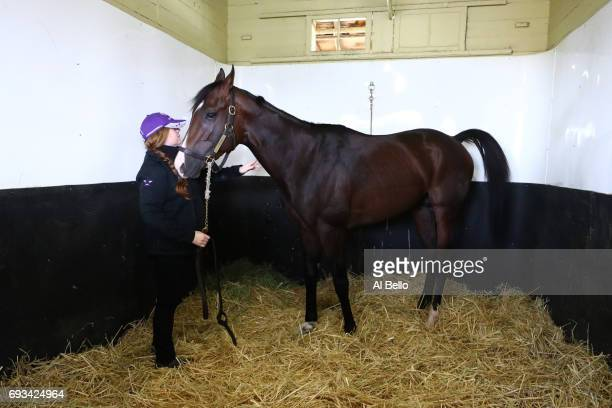 Assistant Trainer Sarah Campion stands with Belmont Stakes contender Classic Empire who scratched from the race after an abscess was discovered on...